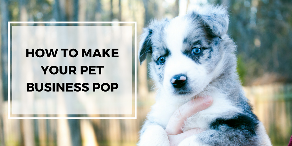How to Make Your Pet Business Pop