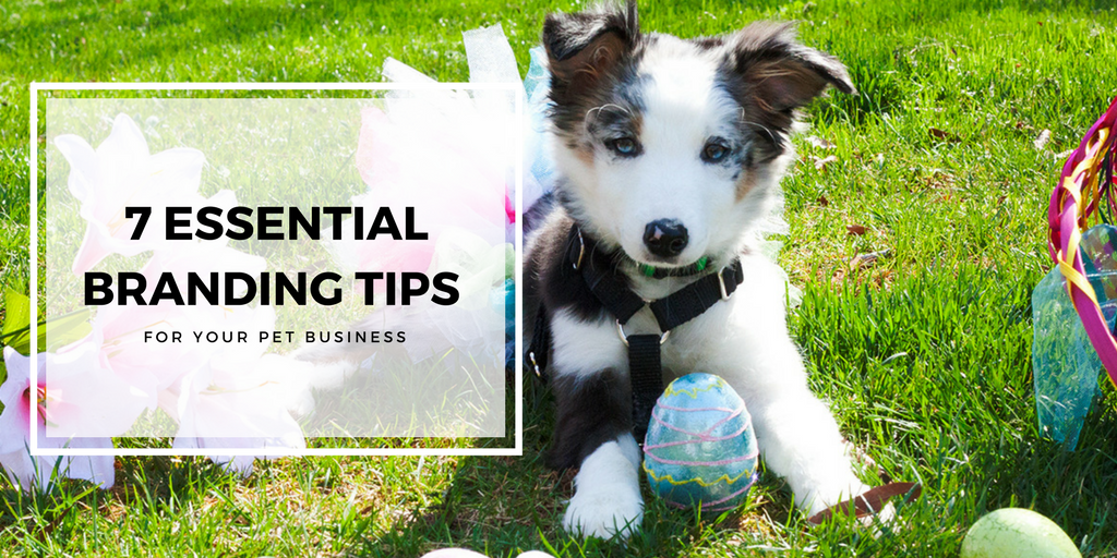 7 Essential Branding Tips for Your Pet Business