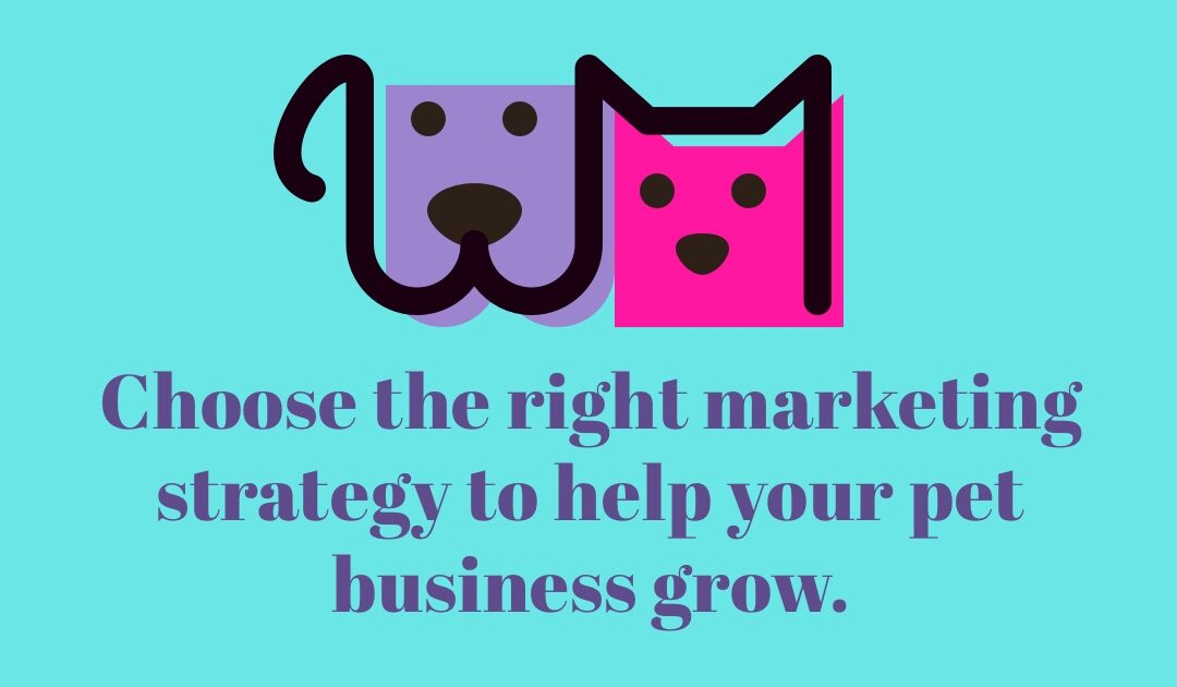 How to create the perfect online marketing strategy for your pet business