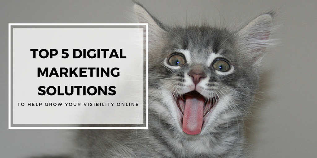 Top 5 Digital Marketing Solutions to Help Grow Your Visibility Online
